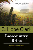Live chat/interview with Fund for Writers' C. Hope Clark