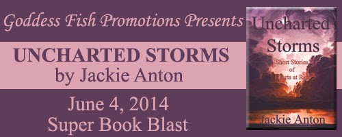 Book blurb and excerpt for Unchartered Storms by Jackie Anton
