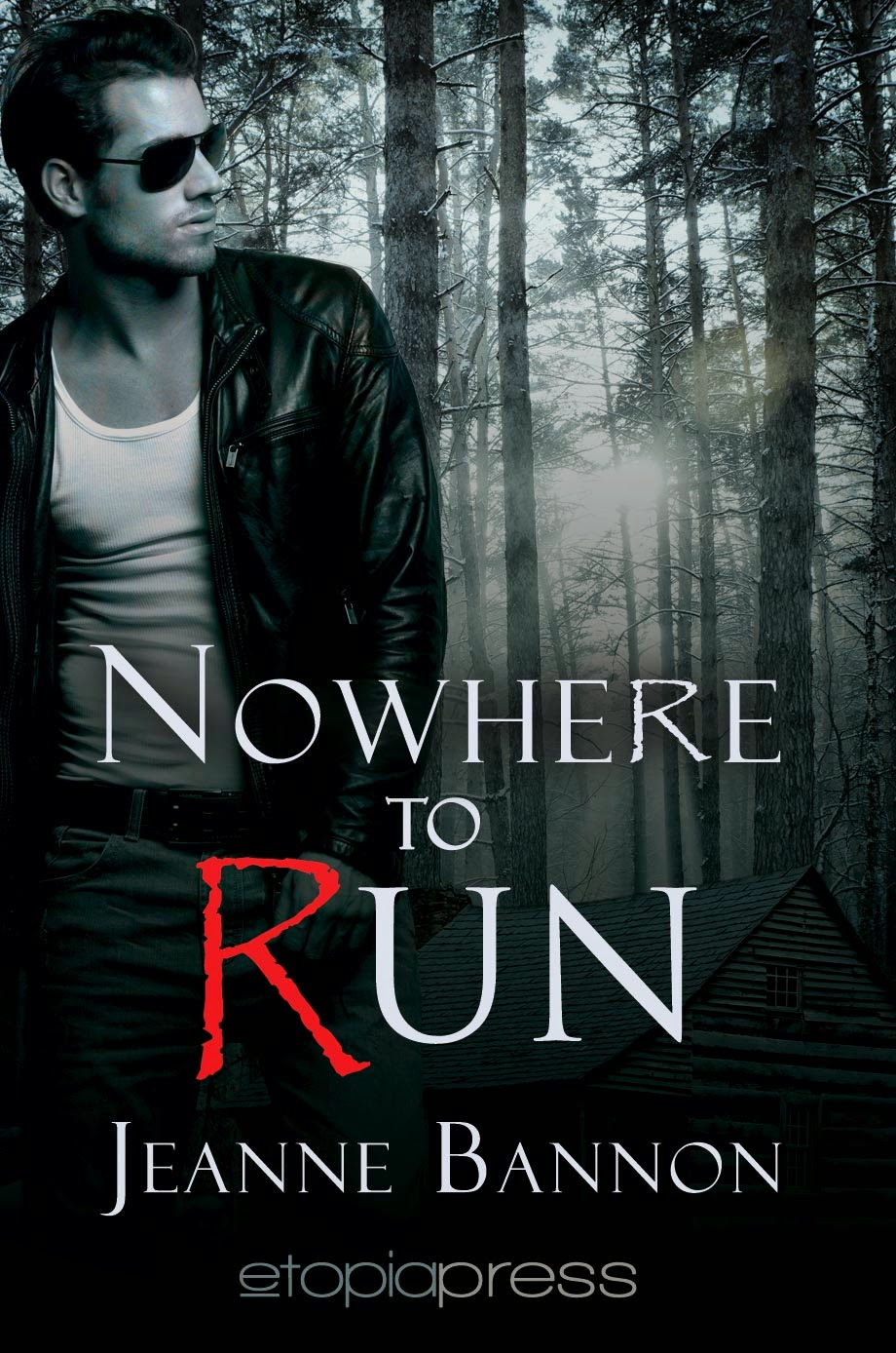 Book excerpt for romantic thriller Nowhere to Run by Jeanne Bannon