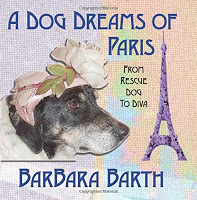 Interview with picture book writer Barbara Barth