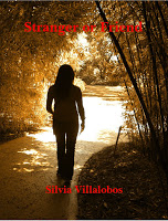 Interview with mystery author Silvia Villalobos