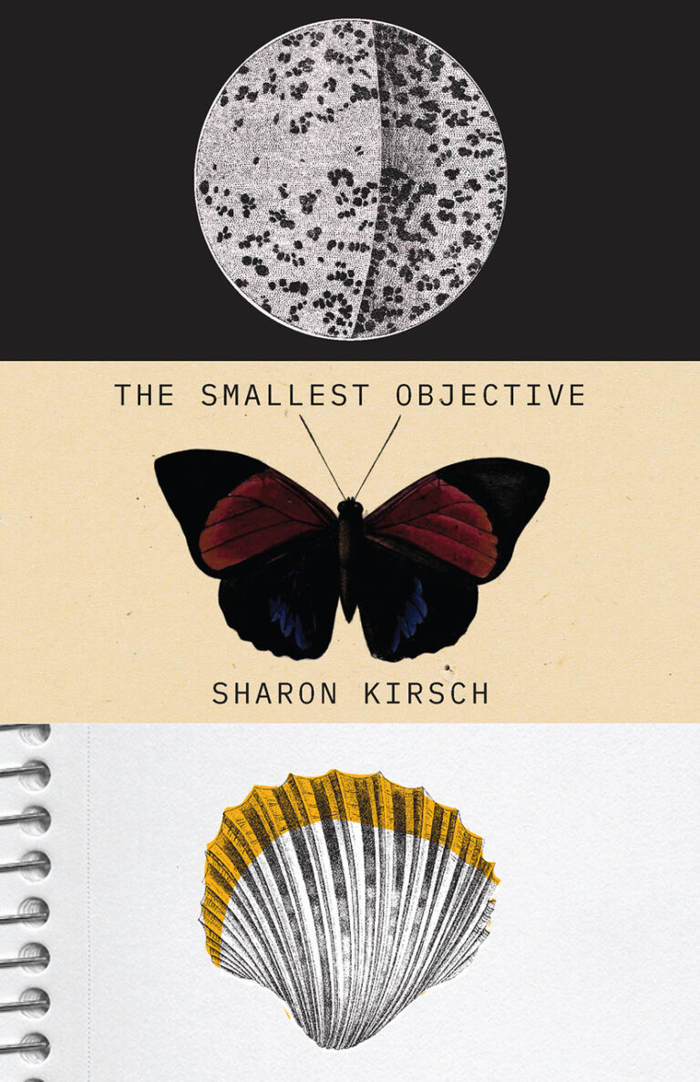 Interview with writer Sharon Kirsch